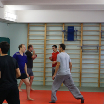 mastershaolin-seminar-udari-nogami-1