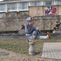 shaolin-temple-li-vong-chan-10