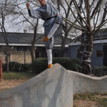 shaolin-temple-li-vong-chan-11